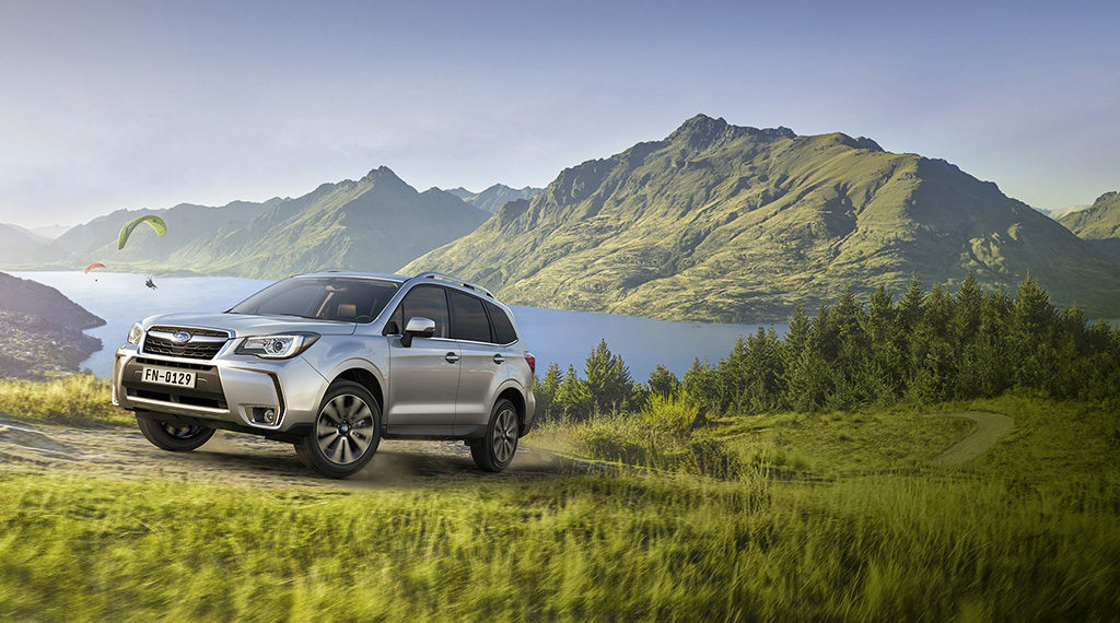 Banniere accueil mobile forester grise